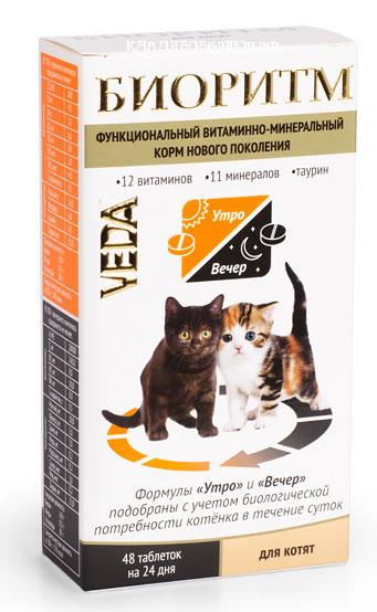 какие для котят хорошие витамины предлагает следующие